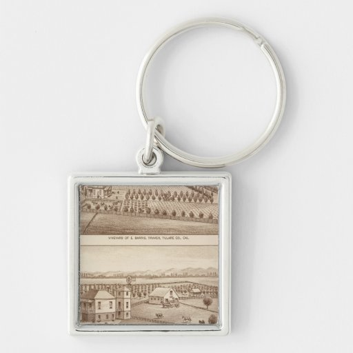 Vineyards, ranches, Tulare Co, Calif Keychains