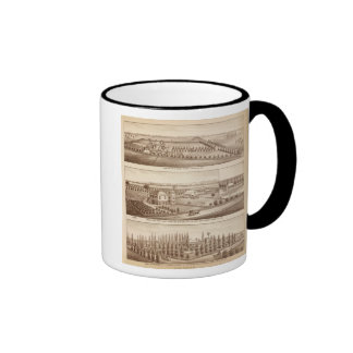 Vineyards, ranches, Tulare Co, Calif Mugs