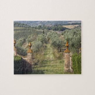 Vineyards, Tuscany, Italy Jigsaw Puzzle
