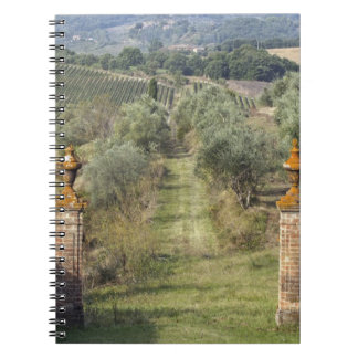 Vineyards, Tuscany, Italy Spiral Notebook