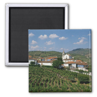 Vineyards, Village of San Miguel, Douro 2 Inch Square Magnet