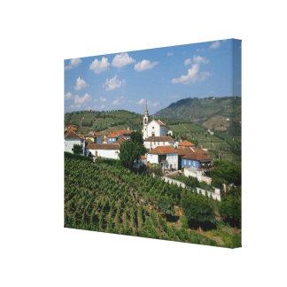 Vineyards, Village of San Miguel, Douro Gallery Wrap Canvas