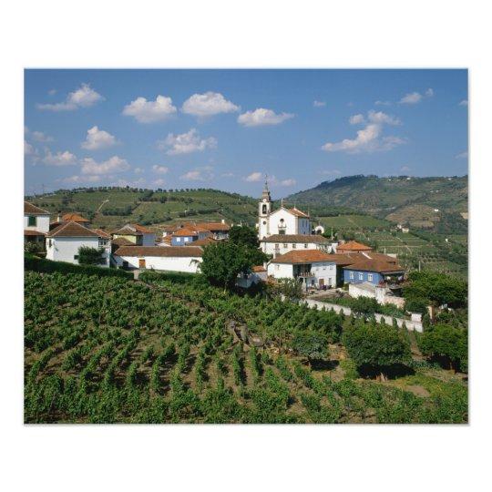 Vineyards, Village of San Miguel, Douro Photo Print