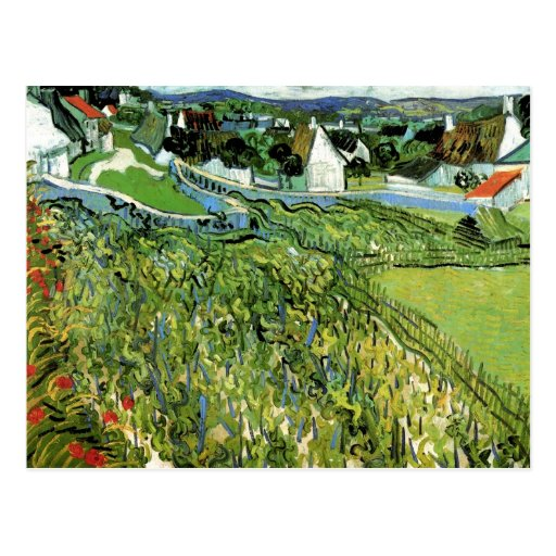 Vineyards with a View of Auvers, Vincent van Gogh Postcard