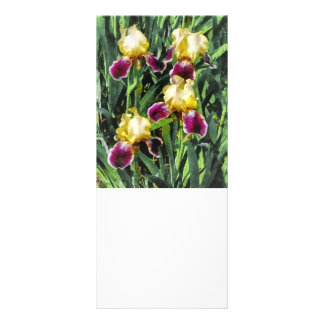 Vingolf Irises Rack Card