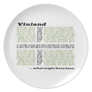 Vinland Runic Flag - What Might Have Been Dinner Plate