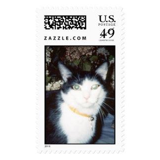 Vinnie Postage Stamps