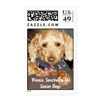 Vinnie, Sanctuary for Senior Dogs Postage Stamps