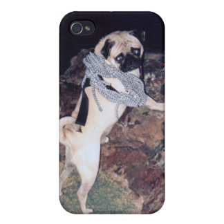 Vinny the Pug IPhone 4/4s Hard Cover