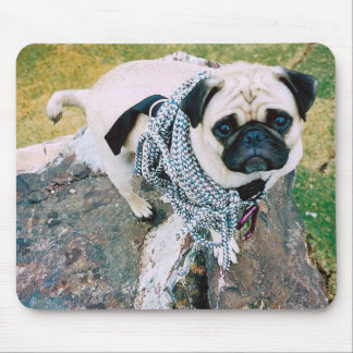 Vinny the Pug Mouse Pad