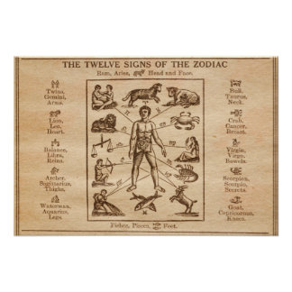 Vintage 12 Signs of the Zodiac