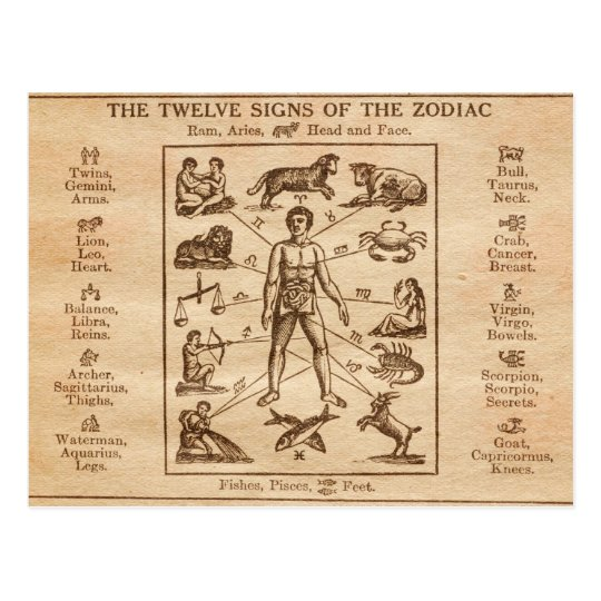 Vintage 12 Signs of the Zodiac Postcard