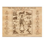 Vintage 12 Signs of the Zodiac Postcards