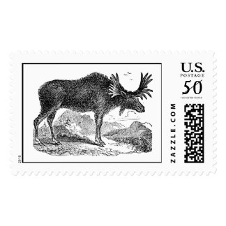 Vintage 1800s American Moose Illustration Template Postage