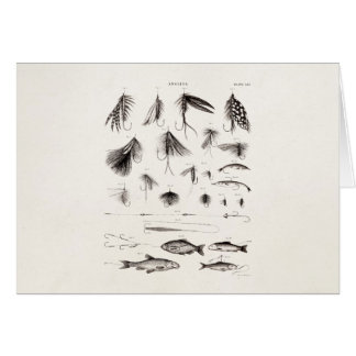 Vintage 1800s Angling Fly Fishing Flies Old Hooks Stationery Note Card