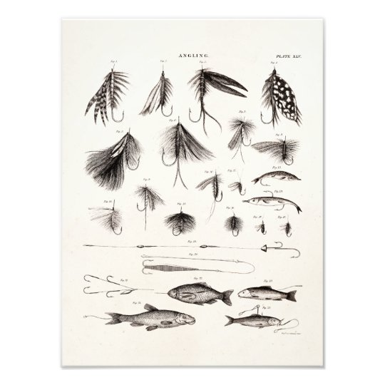 Vintage 1800s Angling Fly Fishing Flies Old Hooks Photo Print Zazzle