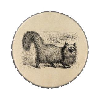 Vintage 1800s Angora Cat Template Retro Cats Jelly Belly Tin