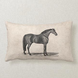 Vintage 1800s Arabian Horse Illustration - Horses Pillow