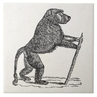 Vintage 1800s Baboon Walking Stick Monkey Baboons Ceramic Tile