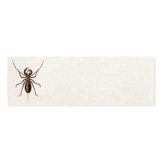 Vintage 1800s Black Red Scorpion Template Scorpion Mini Business Card