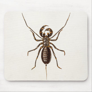 Vintage 1800s Black Red Scorpion Template Scorpion Mouse Pad