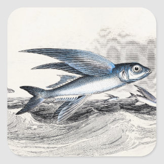 Vintage 1800s Blue Flying Fish In Ocean Waves Square Sticker