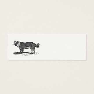 Vintage 1800s Border Collie Dog Illustration Mini Business Card