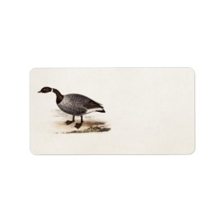 Vintage 1800s Brent Goose - Retro Geese Template Label