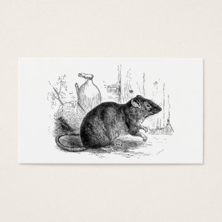 Vintage 1800s Brown Barn Rat Rats Illustration Business Card