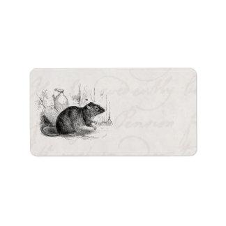 Vintage 1800s Brown Barn Rat Rats Illustration Label