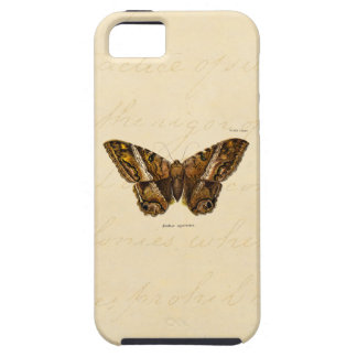 Vintage 1800s Brown Fuzzy Moth Template Butterfly iPhone SE/5/5s Case