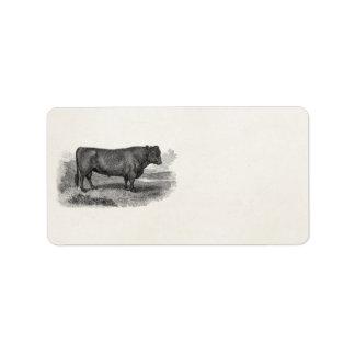 Vintage 1800s Bull Illustration Retro Cow Bulls Label