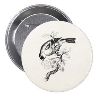 Vintage 1800s Bullfinch Bird Illustration - Birds Pinback Button
