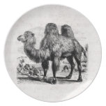 Vintage 1800s Camel -  Egyptian Camels Template Party Plates