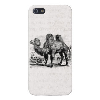 Vintage 1800s Camel -  Egyptian Camels Template Case For iPhone SE/5/5s
