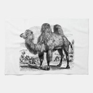 Vintage 1800s Camel -  Egyptian Camels Template Kitchen Towels