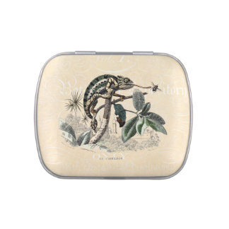Vintage 1800s Chameleon Lizard Retro Chameleons Jelly Belly Tins