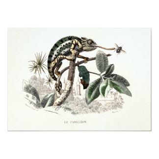 Vintage 1800s Chameleon Lizard Retro Chameleons Card