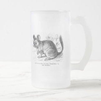 Vintage 1800s Chinchilla Chinchillas Illustration Frosted Glass Beer Mug
