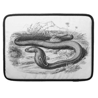 Vintage 1800s Cobra Snake Retro Cobras Drawing MacBook Pro Sleeves