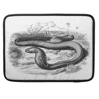 Vintage 1800s Cobra Snake Retro Cobras Drawing Sleeve For MacBook Pro