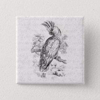 Vintage 1800s Cockatoo Parrot Bird Cockatiel Birds Button
