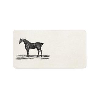 Vintage 1800s English Hunter Horse Hunting Horses Address Label