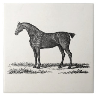 Vintage 1800s English Hunter Horse Hunting Horses Large Square Tile