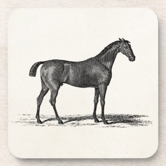 Vintage 1800s English Race Horse - Racing Horses Drink Coaster
