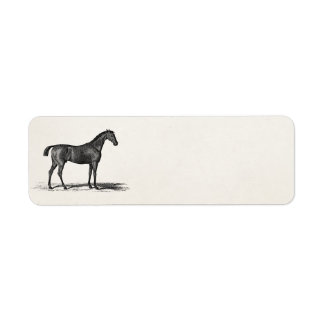 Vintage 1800s English Race Horse - Racing Horses Label