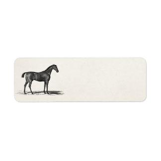 Vintage 1800s English Race Horse - Racing Horses Return Address Label