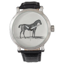 Vintage 1800s English Race Horse - Racing Horses Watches