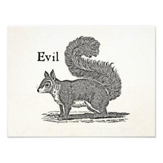 Vintage 1800s Evil Squirrel Illustration Photograph
