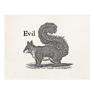 Vintage 1800s Evil Squirrel Illustration Postcard